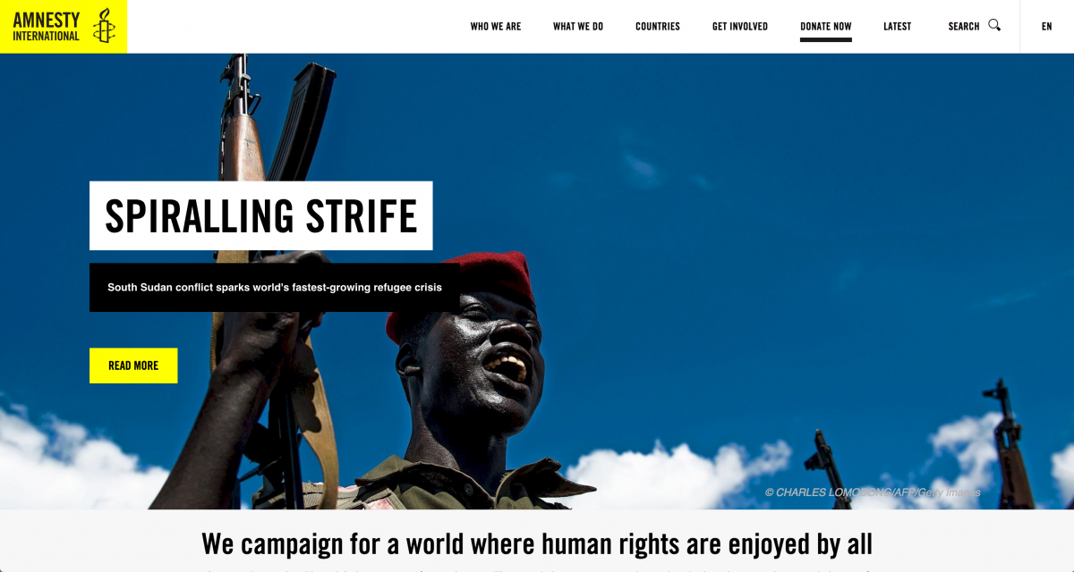 Amnesty International Website Sample