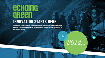 Echoing Green Annual Report Sample