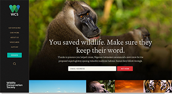 Wildlife Conservation Society Website Sample