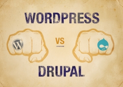 Drupal vs. Wordpress - Questions to ask